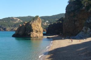 playa Pals